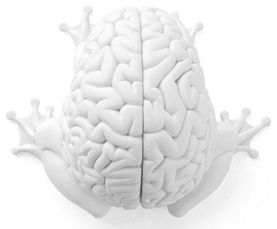 Jumping Brain DIY